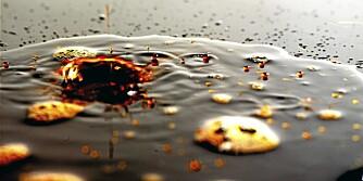 ENUMETTET: Oljer med mye enumettet fett, som olivenolje og rapsolje, tåler oppvarming.