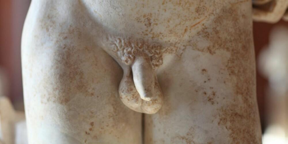 BESKJEDEN: Den klassiske greske statuen viser en velskulpturert maskulin mannsperson, med en nokså beskjeden penis.