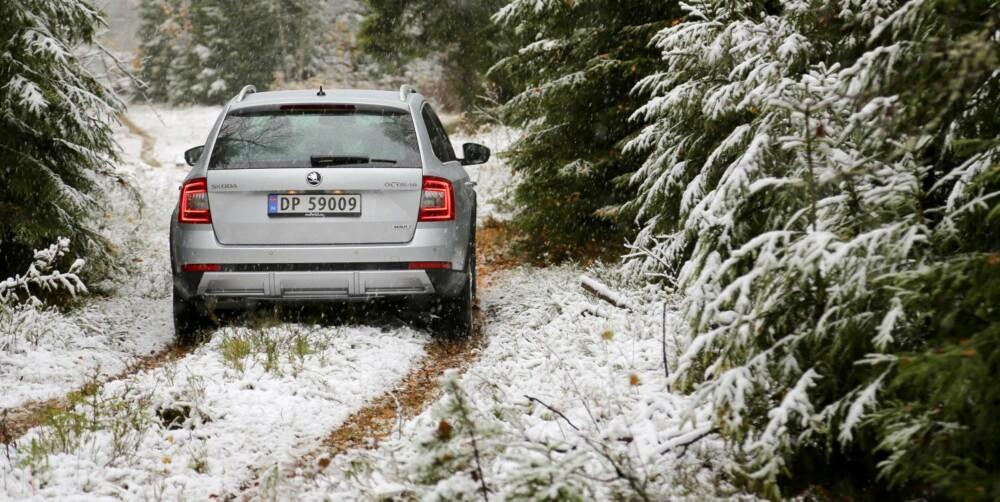 DET LILLE EKSTRA: En liten økning i bakkeklaringen, samt beskyttelse under bilen gjør at du føler deg tryggere på dårlig vei.