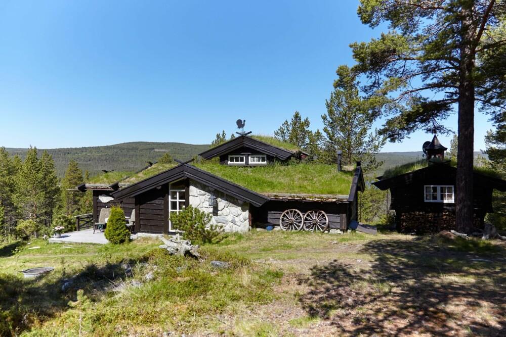 VAKKER VEGG: Veggen er blitt en spennende flate med mye liv ved at de har kombinert villmarkspanel, naturstein og en langstrakt vindusflate. Gresset på taket gjør at hytta glir fint inn i landskapet.