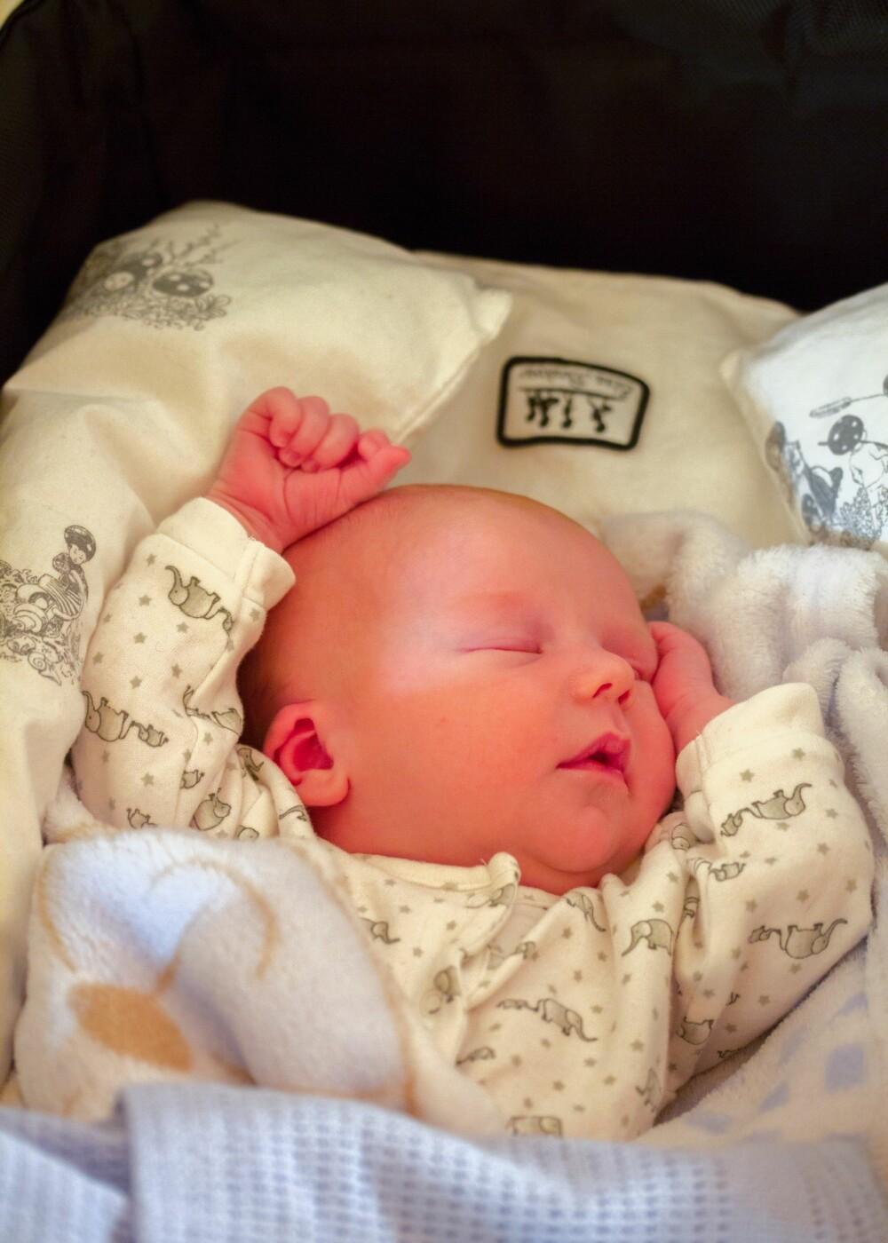 """NYDELIG: Brage sover søtt. Når han er våken er det mye """"skravling""""."""