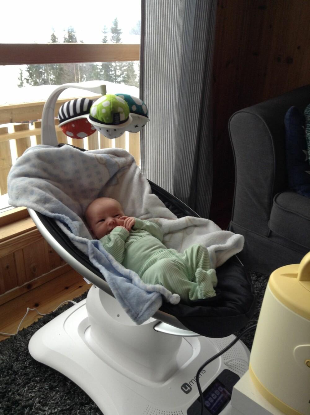 KOSER SEG: Brage liker godt å slappe av i stolen sin.