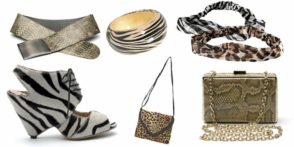 FRA VENSTRE: Krokodillebelte fra Mango (kr 229), zebrasko fra Mango (kr 999), armbånd med zebramønster fra Mango (kr199), leopardveske fra Friis & Co (kr 499), hårbånd med zebra- eller leopardmønster fra H&M (kr 49,50), veske med slangeskinnsmønster fra Mango (kr 449).