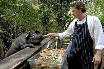 NATURLIG MAT: En av Nederlands beste kokker, Sander Overeinder, driver Restaurant As som et økologisk prosjekt. Du kan reservere plass ved hans bort til lunsj hver dag. Foto: Restaurant As.