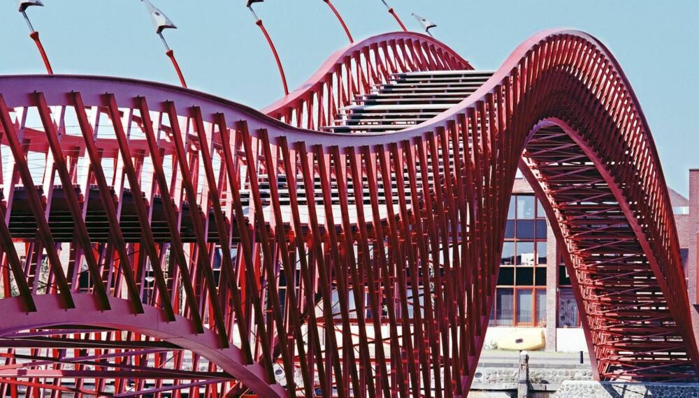 SLANGE: Som en Pyton slanger gangbroen seg over et sund og forbinder to bydeler med hverandre. Treffende navngitt Pytonbrug (Pyton-broen). Foto: iAmsterdam.com