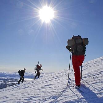POLLENPAUSE PÅ PÅSKEFJELLET: Hvis du er allergisk bør du vurdere fjellet i påsken.