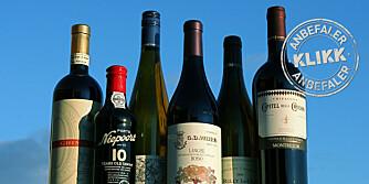TAKLER JULEMATEN: Her er viner til både ribbe, pinnekjøtt, torsk og søtsaker.