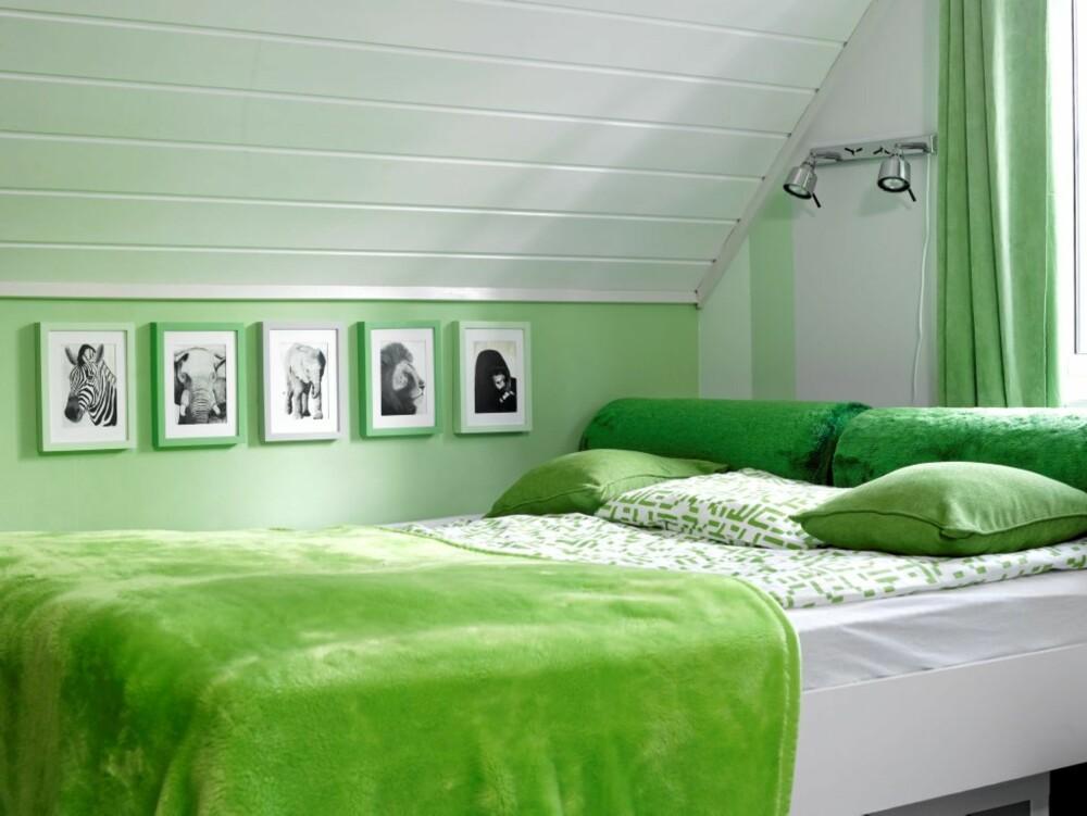 PÅ LINJE: Trerammene på barnerommet er malt i samme nyanse som er brukt på veggene, og festet med to skruer, en oppe og en nede. Fargen Renoir er brukt på kneveggen og som en stripe på gavlveggen, brutt opp av «Juel» og lys grå (NCS 1000 N).