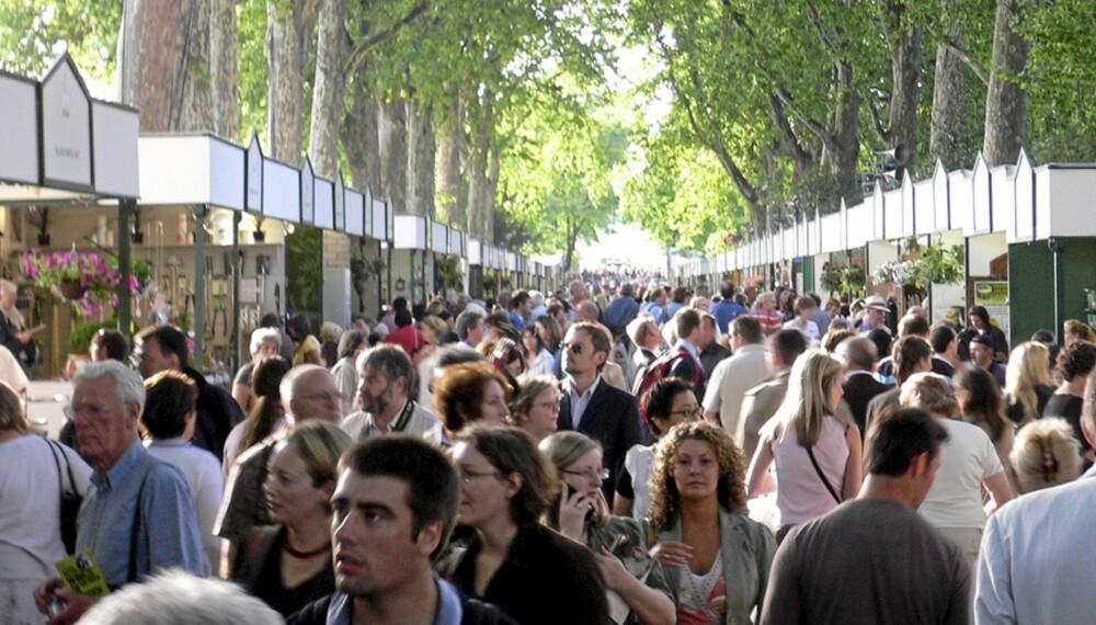 """FOLKEHAV: Blomster trekker 160.000 besøkende til Chelsea utenfor London hvert år. Foto: <a href=""""http://www.flickr.com/photos/herry/514288909/sizes/l///"""">wolfiewolf</a> på Flicker.com. Noen <a href=""""http://creativecommons.org/licenses/by/2.0/deed.en_GB"""">rettigheter</a> reservert."""