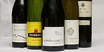 FRISKE VINER: Du trenger viner med høy syre for å vaske bort fettet.