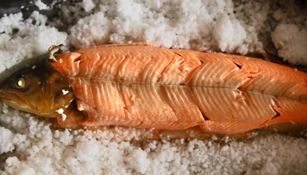 SALTBAKT FISK. Dette er måten å få skikkelig saftig fisk.