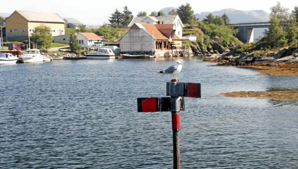 VALG: Hvor skal du gå her? Prøv vår quiz og finn ut. Dette merket finner du Korssund i Sogn og Fjordane, et kjent sted i Snorre Sturlason si bok Heimskringla.