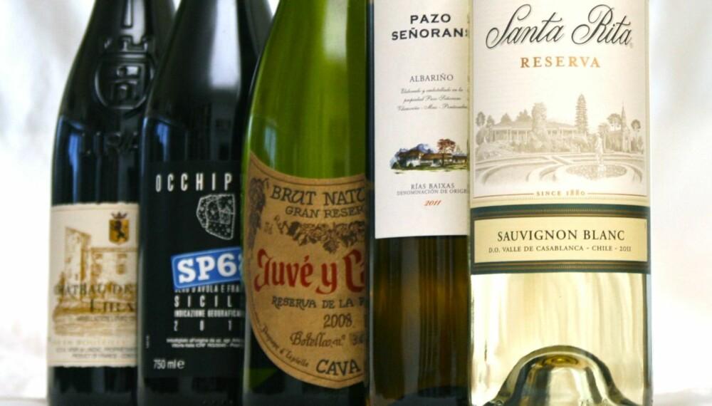 SOMMERLIGE: Disse vinene burde dekke de fleste anledninger i ferietiden.
