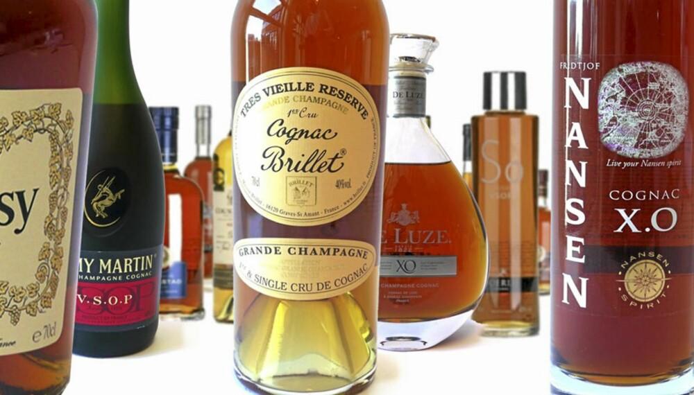 TEST AV COGNAC: Her kommer den store cognac-testen.