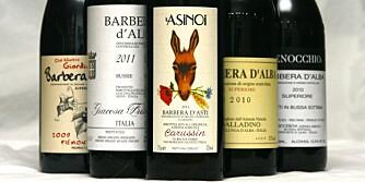 BARBERA: Viner laget på barbera-druen er veldig fleksible i matveien.