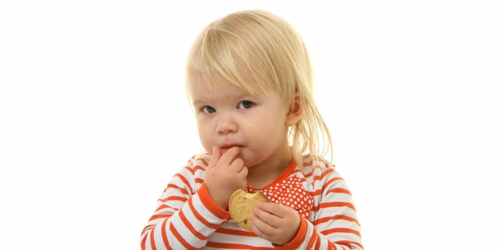 GOD, MEN IKKE SUNN: Kjeksen Dora blir godkjent av Thelma, men får kun terningkast 2 av ernæringsfysiologen.