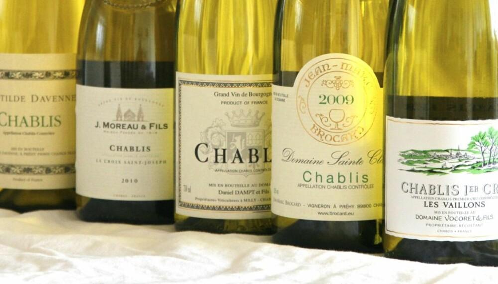 CHABLIS: Vocoret Chablis 1er Cru Vaillons 2008 kommer ut på topp i vår test.