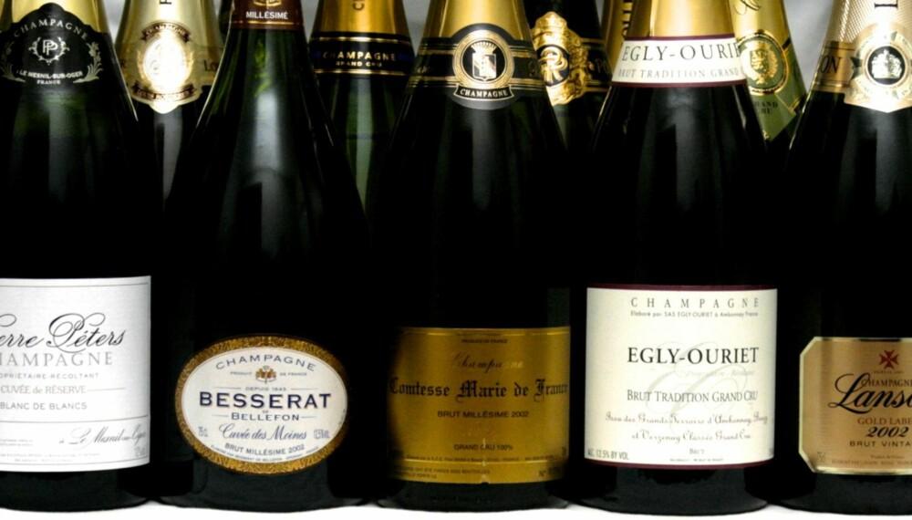 FLOTTE BOBLER: Ti champagner som alle tilbyr høy kvalitet til prisen.