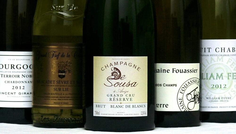 TIL ØSTERS: Du kan drikke forskjellige viner til østers, men fellesnevnerne er hvitt og tørt.