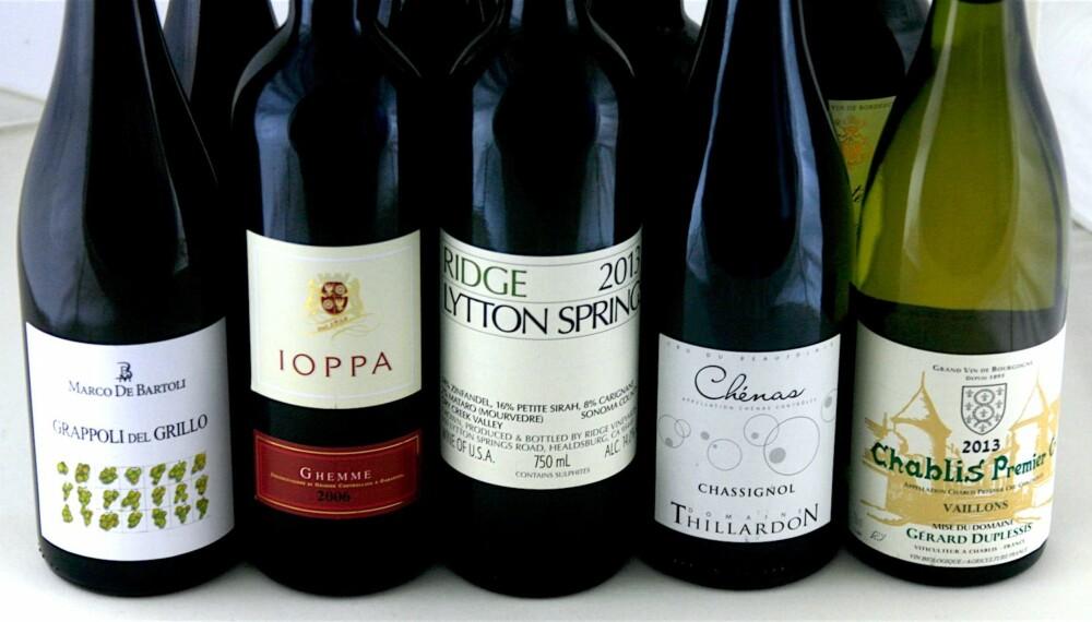 MYE GODT HER: Én champagne, tre hvitviner, fem rødviner og én portvin.