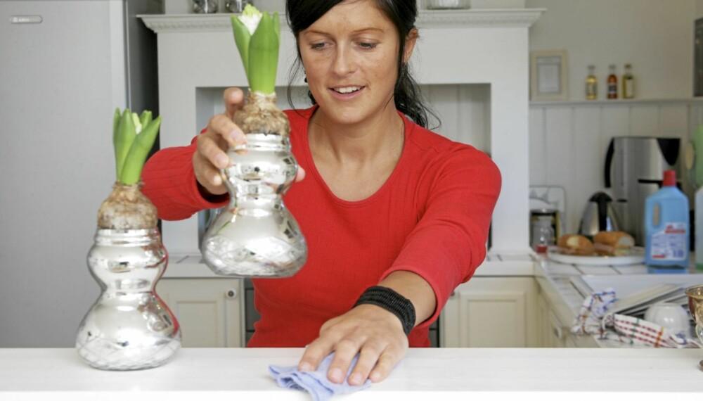 VÅRVASK: Solen viser frem de skitne krokene, men med enkle metoder vasker du huset rent i påsken.