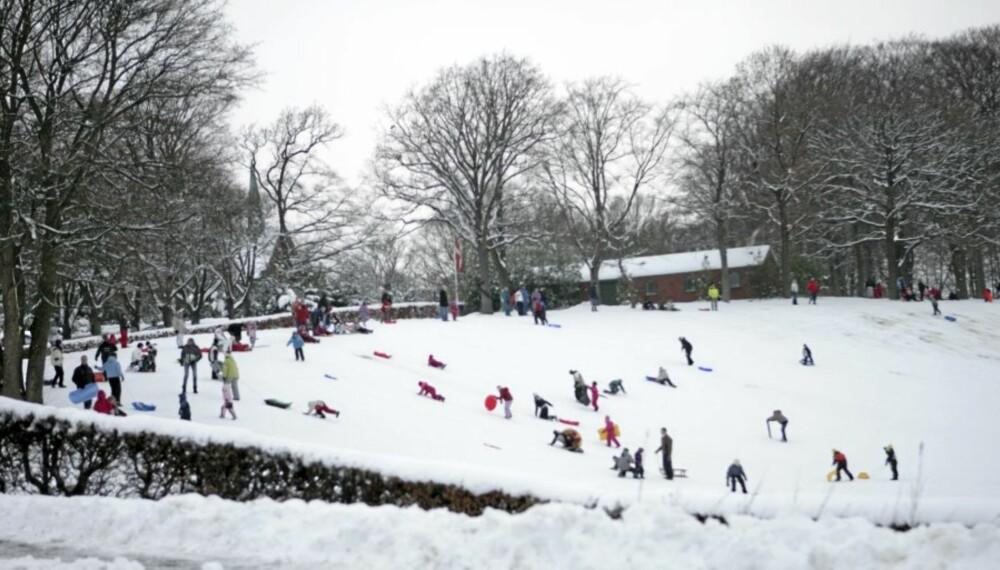 BRUK VINTEREN: Når snøen kommer, får vi flere muligheter til å være aktive. Aking er en energikrevende lek som mange ikke tenker på som trening, og som kan være fin å supplere med om vinteren.