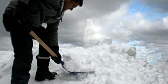 SNØMÅKING: Riktig redskap og riktig ergometisk stilling er viktig når man skal håndtere tung snø.