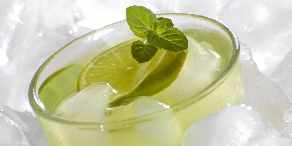 FRISK: Lime og mynte gjør mojito både frisk og aromatisk. Foto: Crestock.