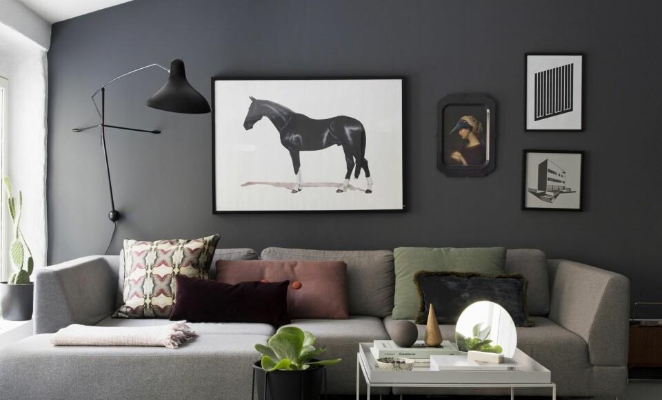SÆRPREG: Nina og Jørgen ønsket en bolig med særpreg, og fant den på Rodeløkka i Oslo. Med mørke fargetoner og storslagne hestebilder fikk den gamle stallen tilbake sin unike personlighet. FOTO: Anne Bråtveit.