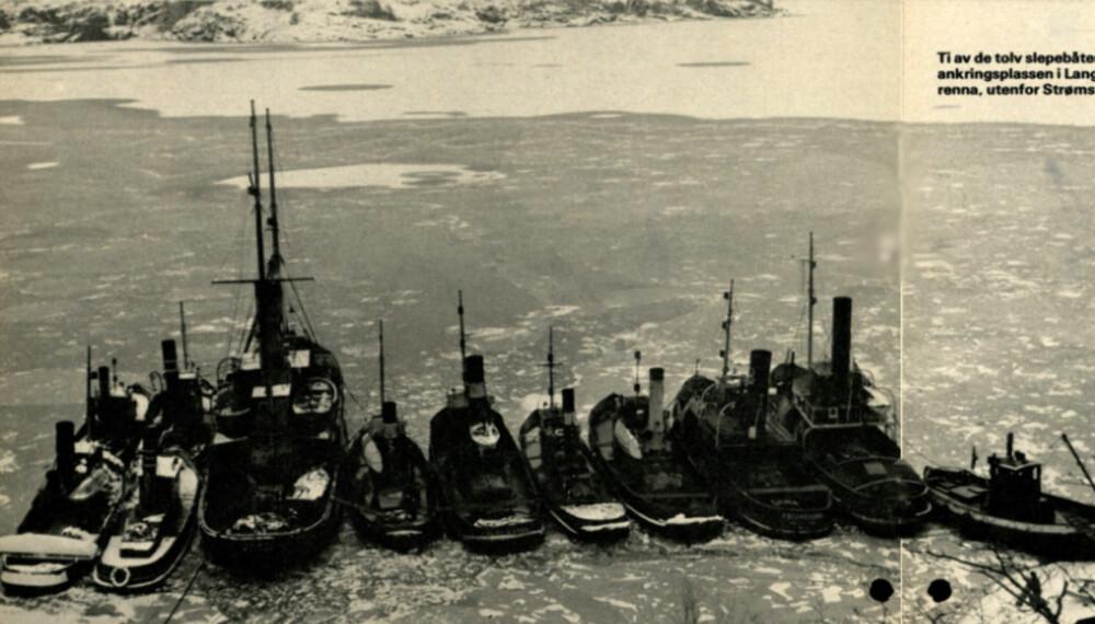 Bilde fra originalartikkelen, hentet fra www.vimennpluss.no