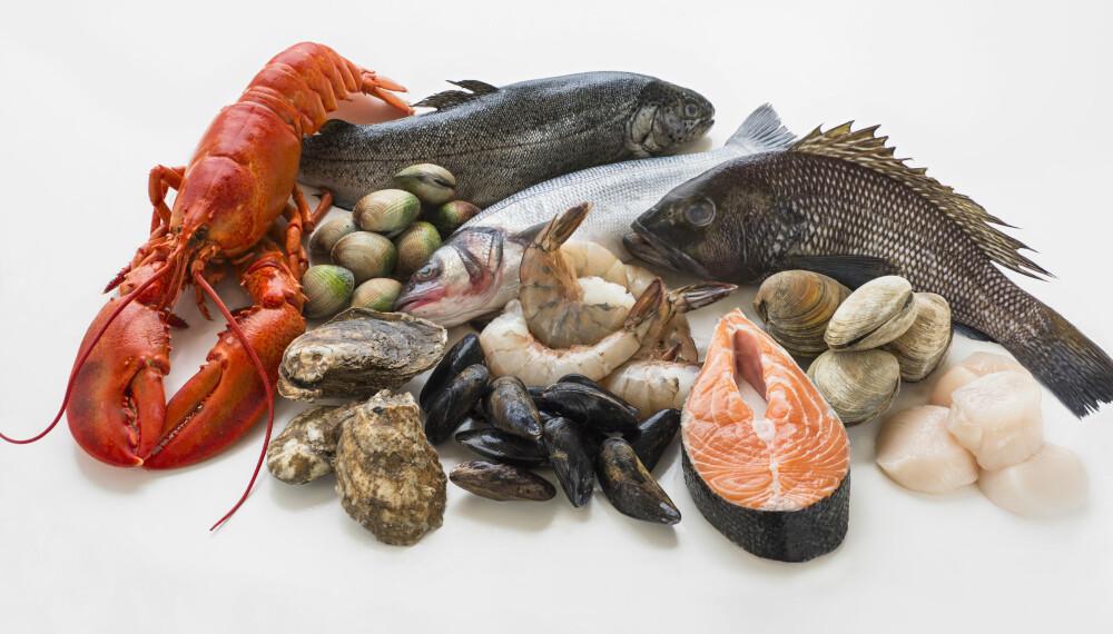 FISKEALLERGI OG SKALLDYRALLERGI: Allergi mot fisk og skalldyr er blant de mest hissige matallergiene. Foto: Getty Images