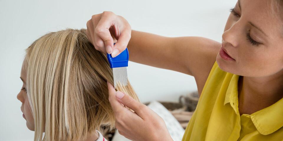 LUS I HÅRET: Har barnet ditt først fått hodelus kan den være vanskelig å bli kvitt, her er rådene for hvordan du fjerner det. Foto: Getty Images
