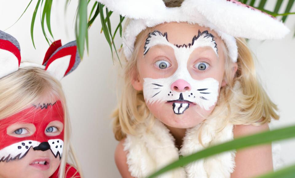ANSIKTSMALING: Hva med å male barnet med ansiktsmaling, og gjøre det om til en kanin eller en rev? Barn kan ha det mye gøy med ansiktsmaling. FOTO: Tanja Reine.