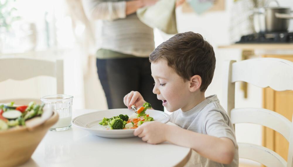 TEST AV MATKASSE: Tre småbarnsfamilier testet matkasser fra Godt Levert, Adams Matkasse og Kolonihagen. Hvilken kom best ut? FOTO: Getty Images.