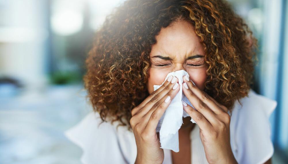 POLLENALLERGI: Rennende eller tett nese, uttalt tretthet, pusteproblemer, samt røde, kløende og rennende øyne er de vanligste symptomene på pollenallergi. Foto: Gettyimages.com.