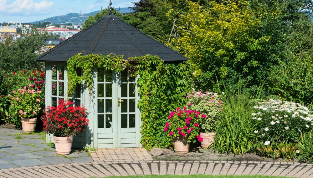 LYSTHUS: Et lysthus kan være et godt sted å søke tilflukt i på en varm sommerdag eller på en regnfull høstdag. Også slike kan du bygge uten å søke kommunen, men det gjelder de samme reglene som for andre tilbygg. (FOTO: Colourbox.com)