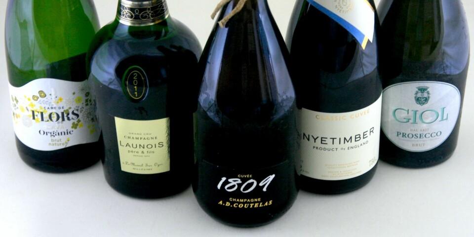 FOR NOEN OG ENHVER: To champagner, én cava, én prosecco og én engelsk musserende.