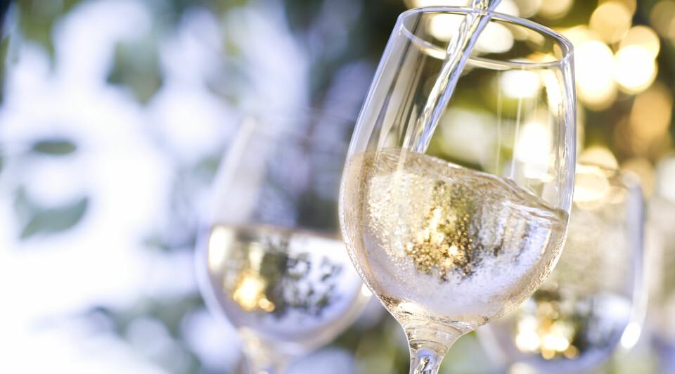 DE BESTE HVITVINENE: De ti vinene på topplisten kommer fra seks forskjellige land. FOTO: Getty Images