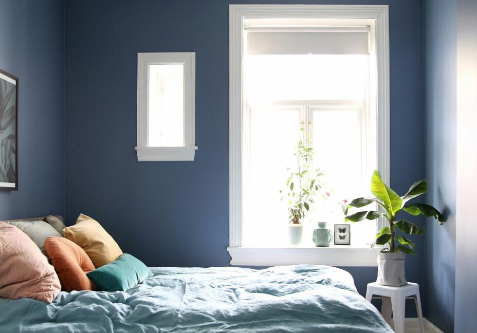 Soverommene ligger ut mot bakgården. Det lille vinduet gir ekstra lysinnfall og gir rommet et annerledes preg. Ved det store vinduet står en Tolix-krakk med en grønn plante. Rommet er malt i en behagelig blåtone, Demin Blue fra Jotun.