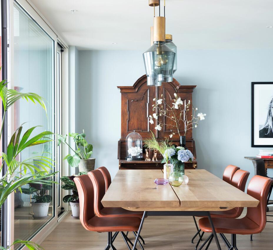 I spisesonen er det en miks av gamle og nye møbler. Det solide spisebordet og stolene er fra danske Bent Hansen. Pendlene Fenomen er i messing og sotet glass, de er kjøpt hos Slettvoll. Skapet i bakgrunnen har de arvet fra Niels sin bestefar. Det mørke treskapet er delikat mot den lyseblå veggen. Plantene bidrar til et frodig inntrykk.