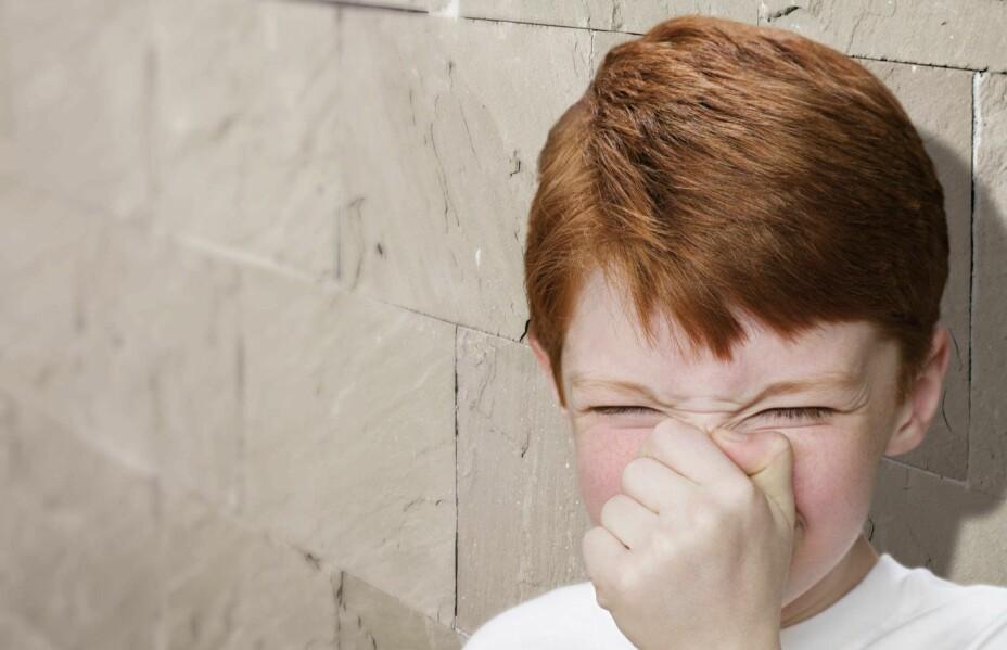 VOND LUKT FRA TOALETT: Vond lukt fra eller rundt toalettet er det mange som opplever. Slik blir du kvitt det..