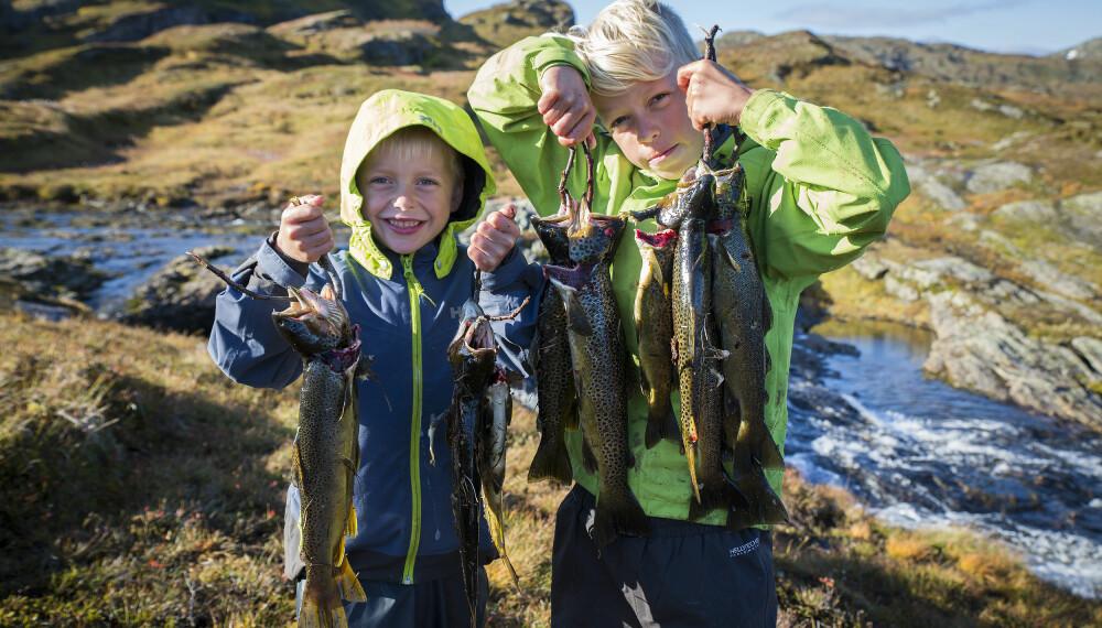 NAPP: Bo og Sune vet hvor fisken biter. Gode minner fra fisketur til Selhamar i Stølsheimen, september 2017.