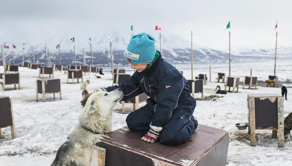 PASSER PÅ: – Vi ser jo så langt her, og så har vi hundene som sier ifra. Trafikken er mer skummel enn isbjørnene, sier Karina.