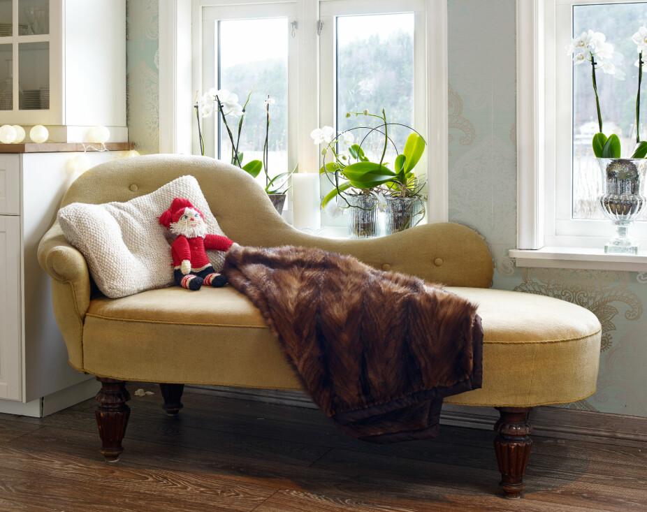 Et skipperhus verdig. Vakre, duse tapeter, gir hytta en stilfull atmosfære. Siden familien har nydelig utsikt og ingen reelt innsyn, så velger de gardinløse vinduer. I vinduskarmene er det satt forskjellige hvite og grønne juleblomster. Det eneste som bryter med fargen er den lille heklede julenissen i sjeselongen.