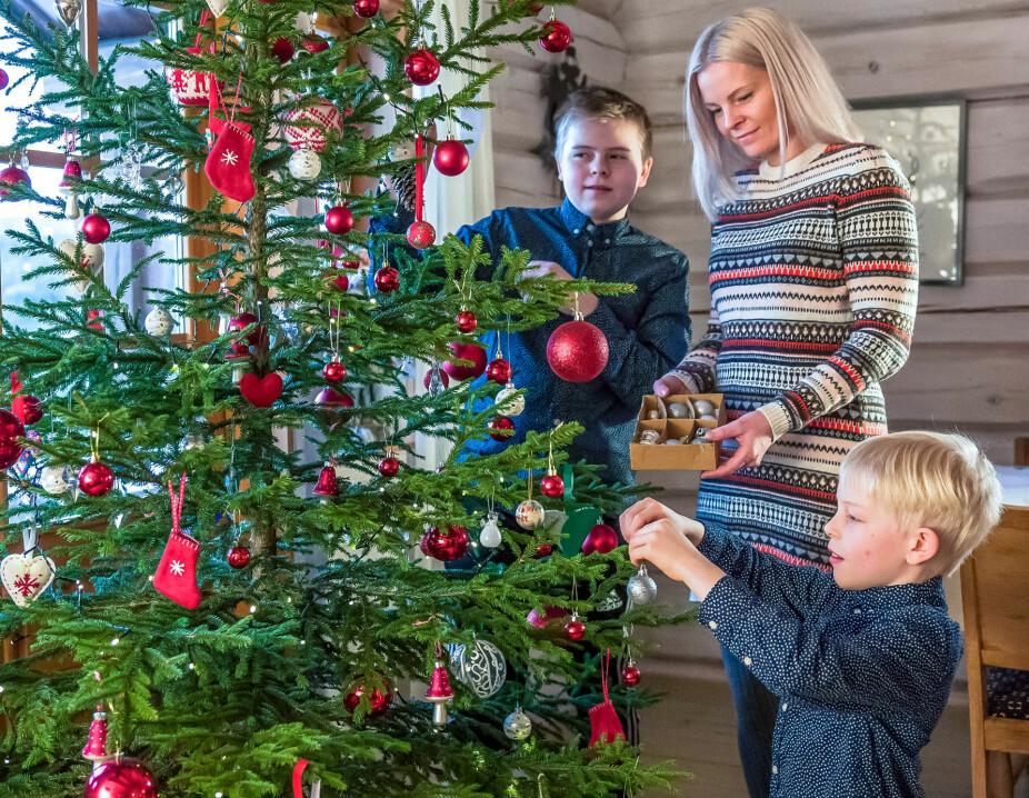 TØMMERHYTTE PÅ GAUTEFALL: Juletreet henter familien selv i naturen rundt hytta. Det er en av de mange hyggelige tradisjonene de har skapt i forbindelse med julefeiringen på Gautefall.