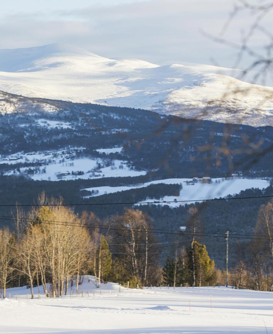 VARIERT LANDSKAP: Området rundt hytta består av både flat mark og en spennende fjellheim som Heidi stadig utforsker på ski.