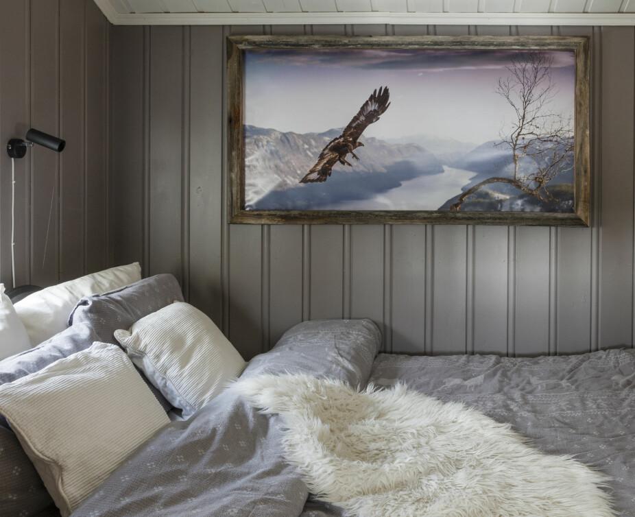 Staselig ørn. Ørn over Bandak heter bildet over senga, og det er tatt av en lokal fotograf. Bildet er fra like over gården til familien og er derfor ekstra koselig å ha på veggen.