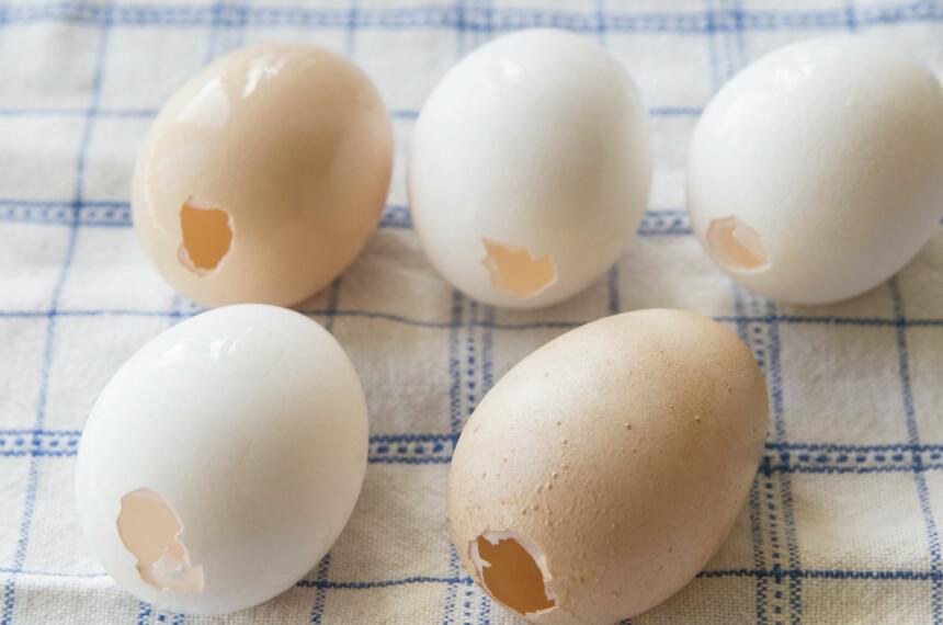 <b>SKJØRE EGG:</b> Vi har brukt en liten eggpumpe fra en hobbybutikk for å få ut innholdet i eggene. Etterpå kan du skylle eggene forsiktig i rennende vann før de lufttørker på et kjøkkenhåndkle.