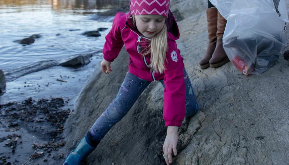 SOSIAL SØPPELPLUKKING: Iblant tar Janne og Thomas med seg barna  Linnea, Filippa og Sander på stranda for å gjøre en liten innsats .