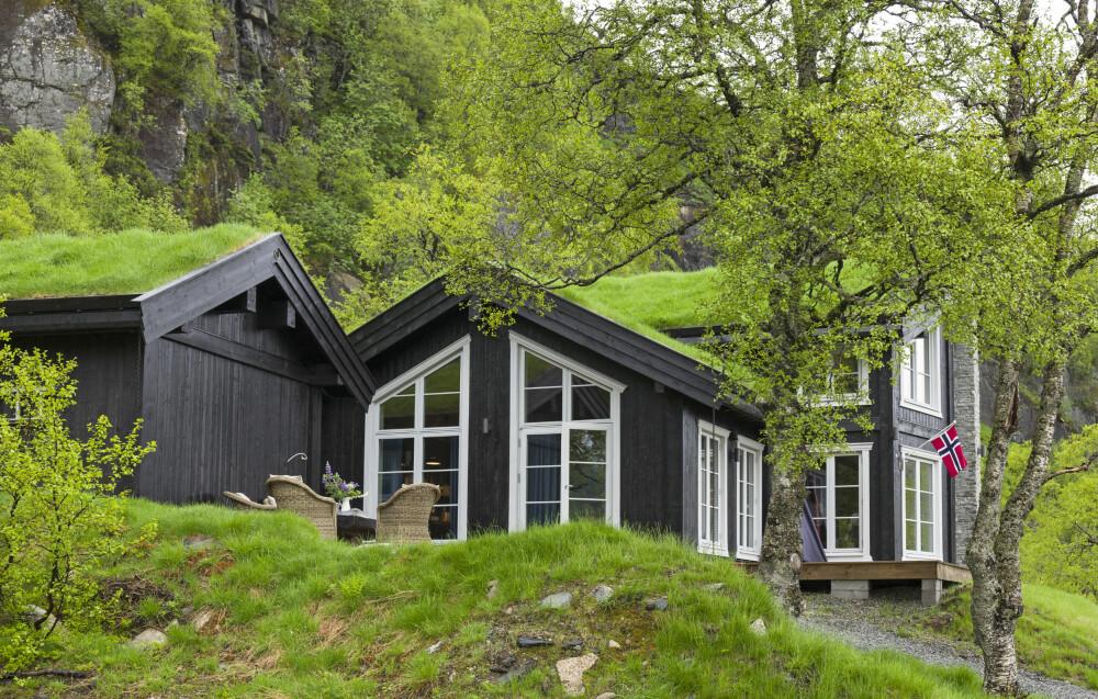 IDYLLISKE OMGIVELSER: Den flotte fjellhytta ligger idyllisk til, og de mange vinduene sørger for god utsikt og at masse lys slipper inn.